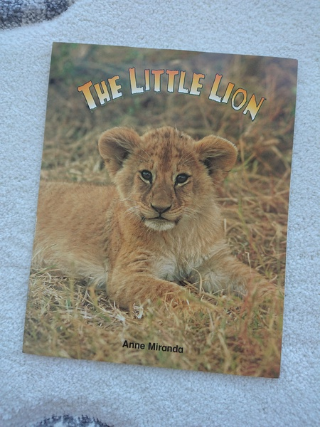 The Little Lion