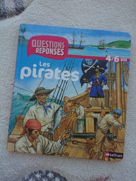 LES PIRATES - QUESTIONS/REPONSES